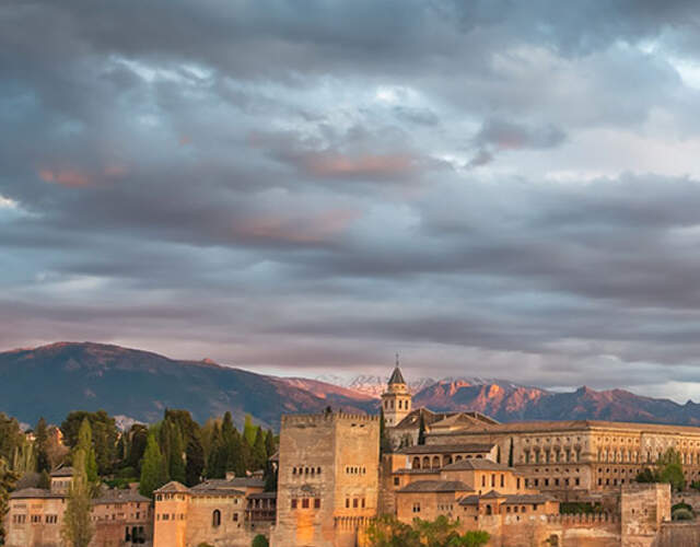 Providers in Granada