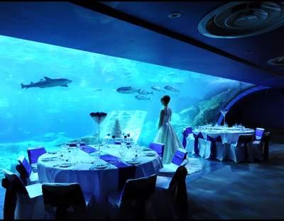 The National Marine Aquarium